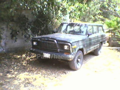 Best petrol engines to put in a 5-door 76 wagoneer ??? Suggestions needed - 217159