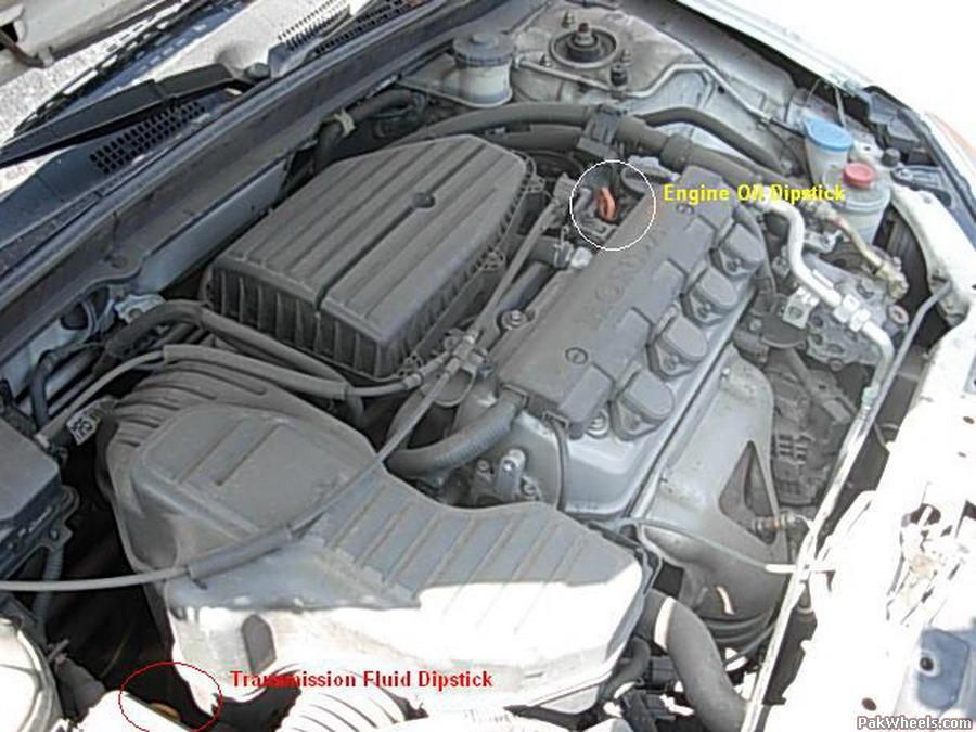 Honda Civic Transmission Dipstick Location on honda cr v automatic transmission diagram